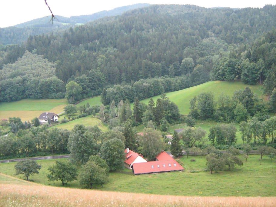 Der Hof von oben, mit Obstgarten, Wiesen und Wald