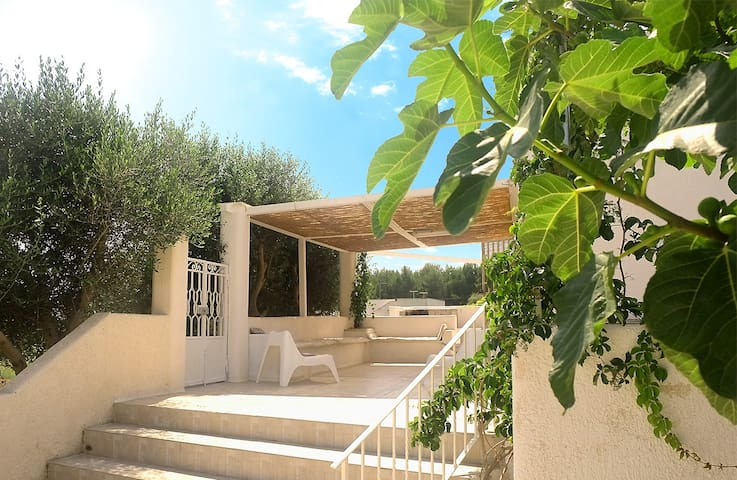 HOLIDAY IN PUGLIA – Villa to rent