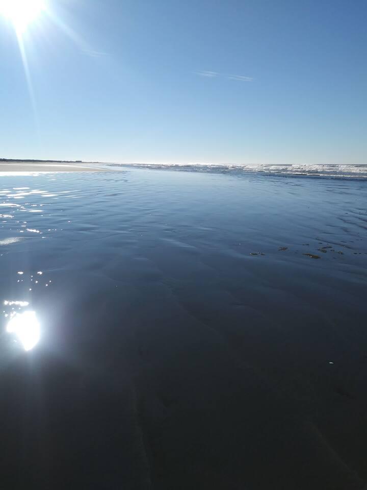 Ocean Shores Surfcrest Ocean Condo - on the beach.