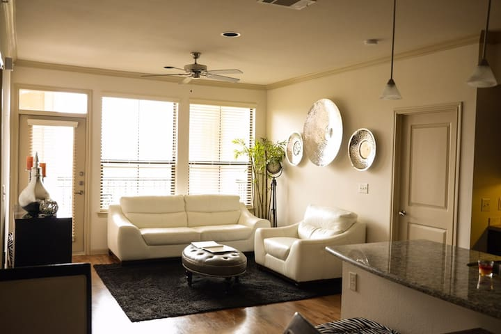 Luxury Apartment Near NRG & Texas Medical Center