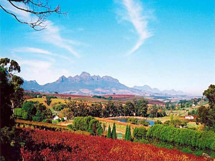 Friendly Triple Standard At Stellenbosch