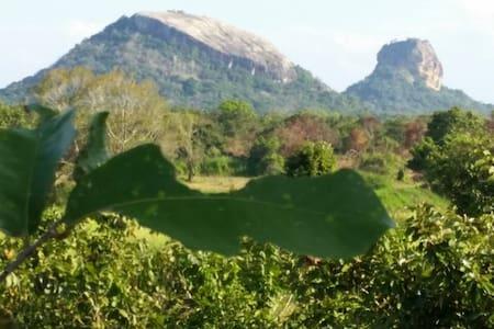 Sigiri Wilderness Home Stay - Sigiriya