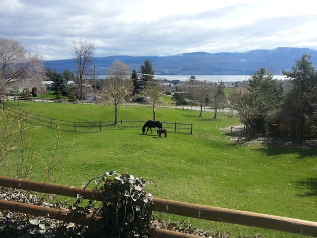 Peaceful setting 2 minutes to all amenities - West Kelowna - Daire