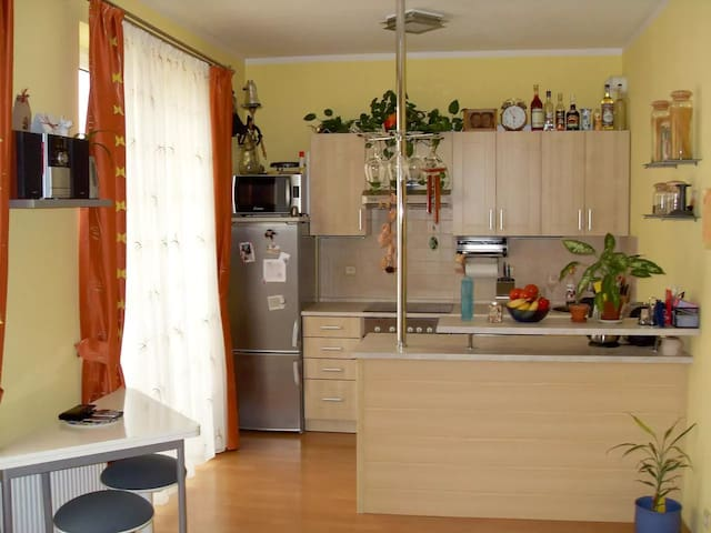 Cosy studio flat for two - Strančice - Daire