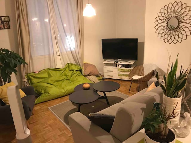 Grand appartement au cœur du centre ville