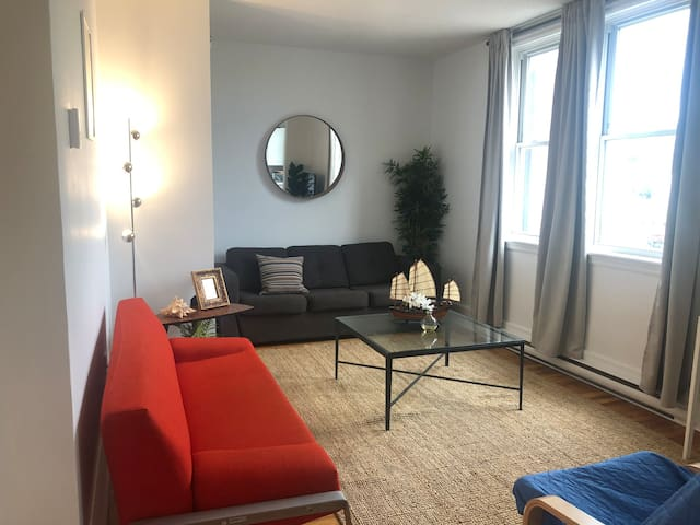 Beautiful One Bedroom Downtown with View