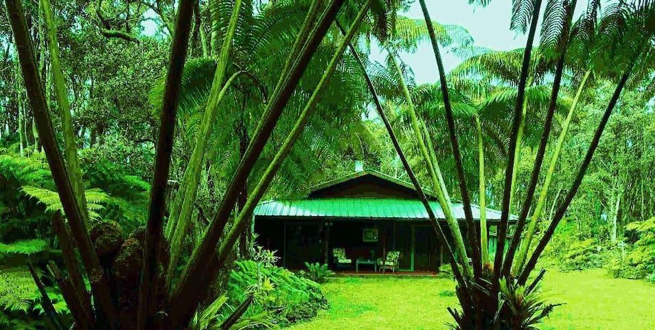 Anthurium Alii Gardens Rainforest Volcano Cottage - Mountain View - House