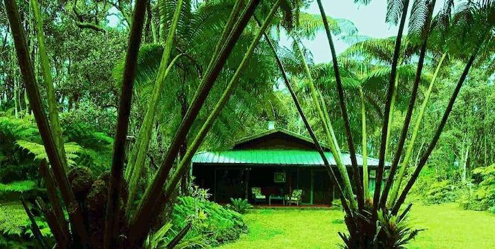 Anthurium Alii Gardens Rainforest, Volcano