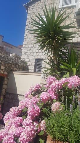 Old Town apartment Lavanda Garden