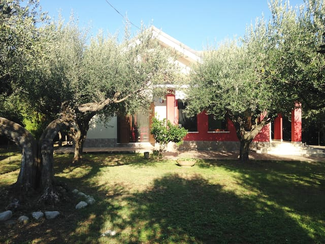 Villa in Città Sant'angelo between olive threes - Citta' Sant'Angelo - Casa de camp