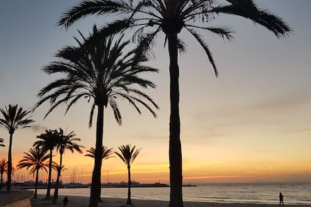 Near the Palma beach!!!!