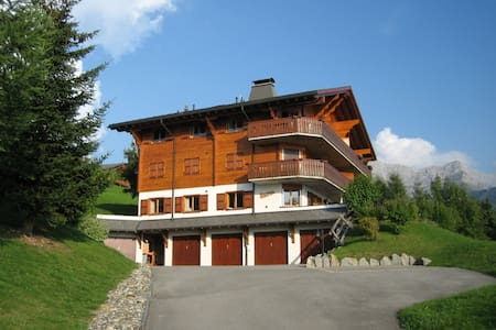 Gorgeous, pet friendly, piste-side apartment - Gryon - Appartement
