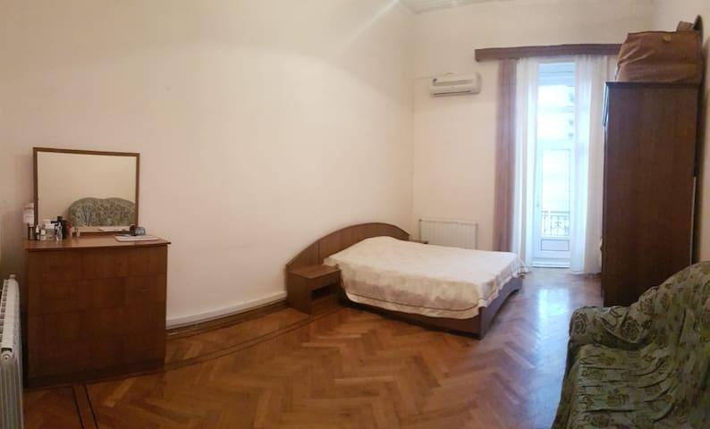 Spacious apartment in the heart of Baku! - Baku - Hostel