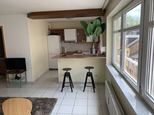 Kitchen  Open space with the living