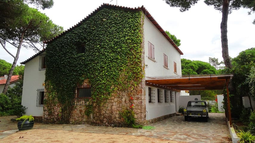 COLARES HOUSE - Colares - Huis