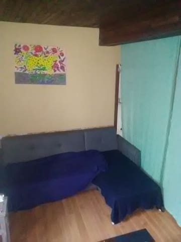 lit-canapé dans un salon