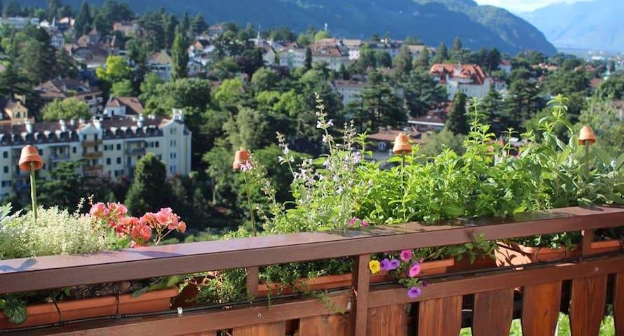 Bienenhof - Wohnung Natura