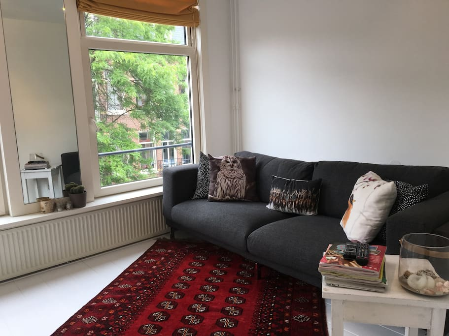 Living room with very comfy couch