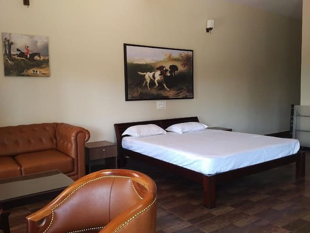 Forestdale Coorg- Mountain View Premium Room-3