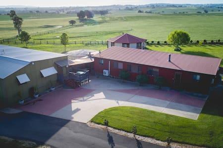 The Train - BoxGrove Farm