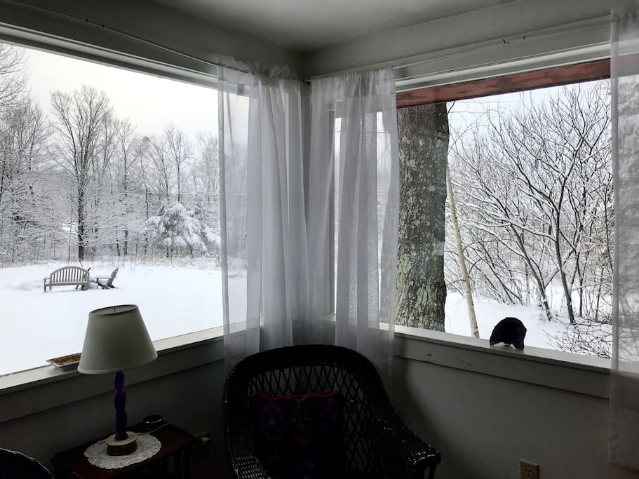 View outside after snowfall. Be outside but inside!