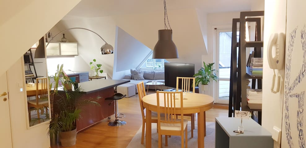 Urban top floor apartment in the city center