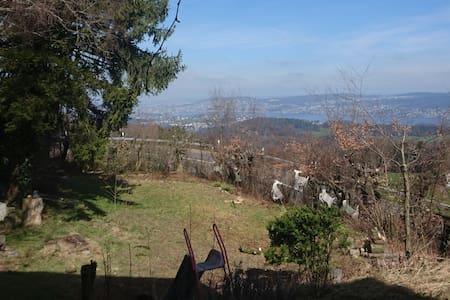 Einmaliger Sicht auf den Zürichsee! - Langnau am Albis - Haus