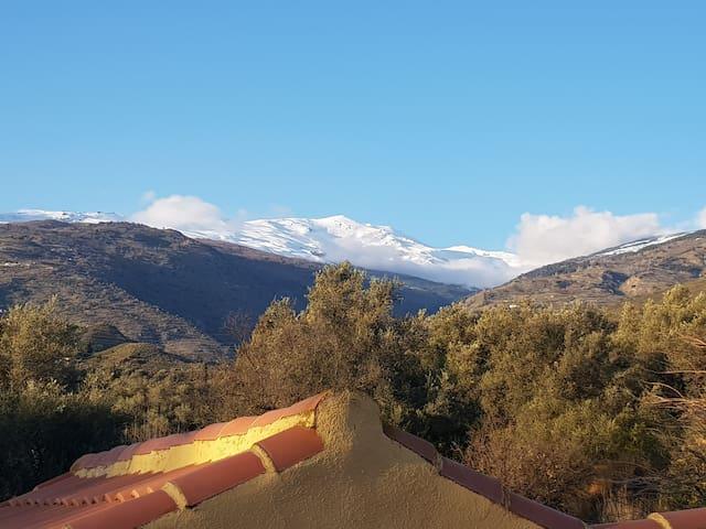Casa Amarilla, peace & paradise in the Alpujarras