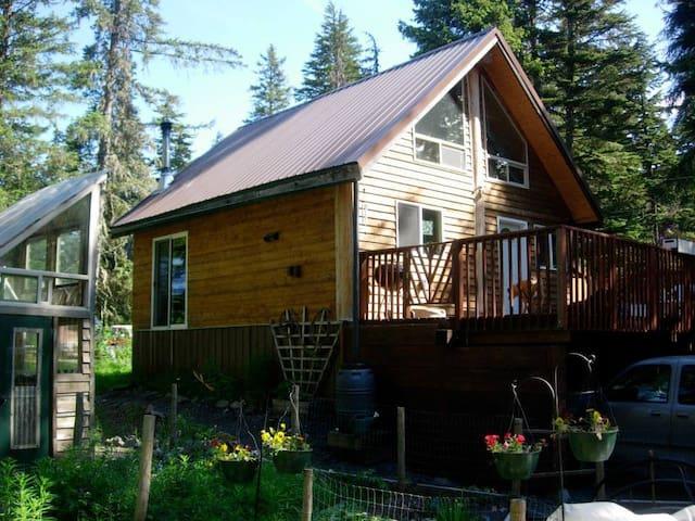 Cozy Camelot Cabin