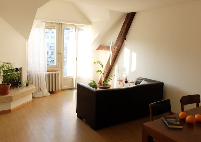 Cosy room next to Baselworld venue - Basel