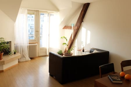 Cosy room next to Baselworld venue - 巴塞尔 - 公寓