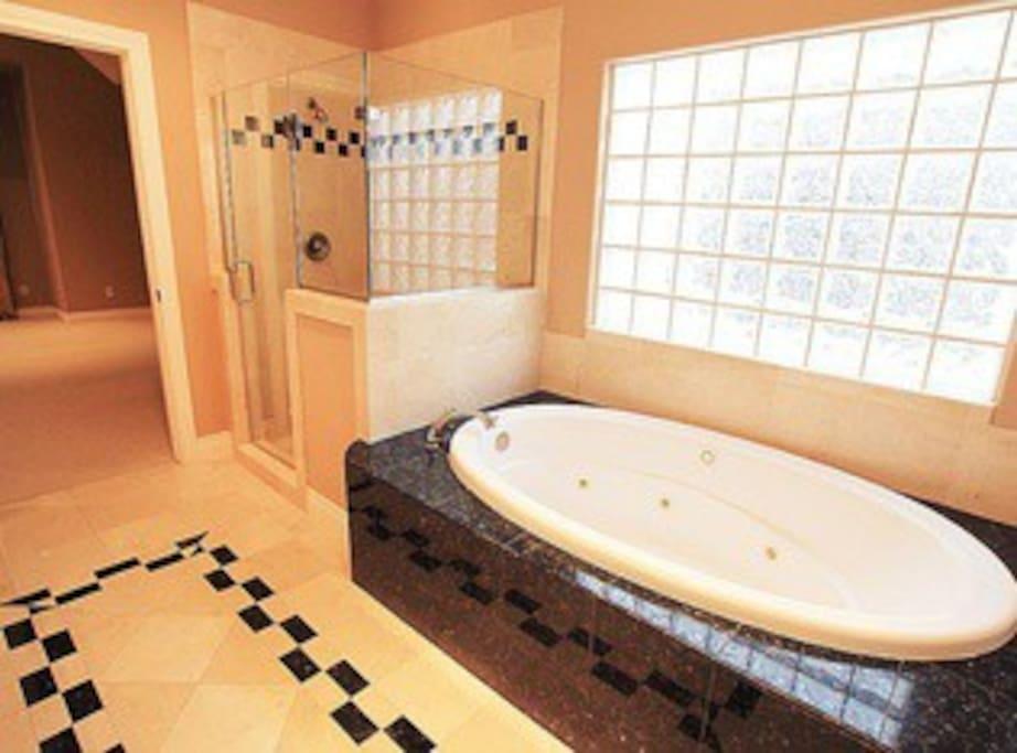 Master Bathroom w/ Jacuzzi Bathtub