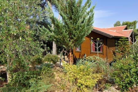 Treehouse Galilee - Kfar Vradim - Puumaja
