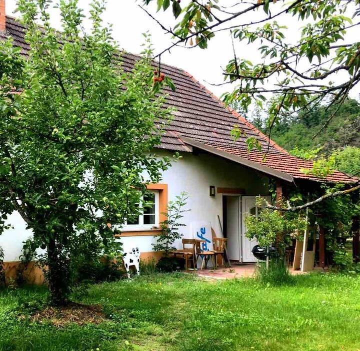 Ferienhaus im Obstgarten am Kamp