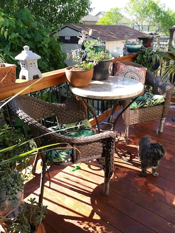 Comfy patio for quiet meals or coffee with view of beautiful garden and scent of jasmine when in bloom.
