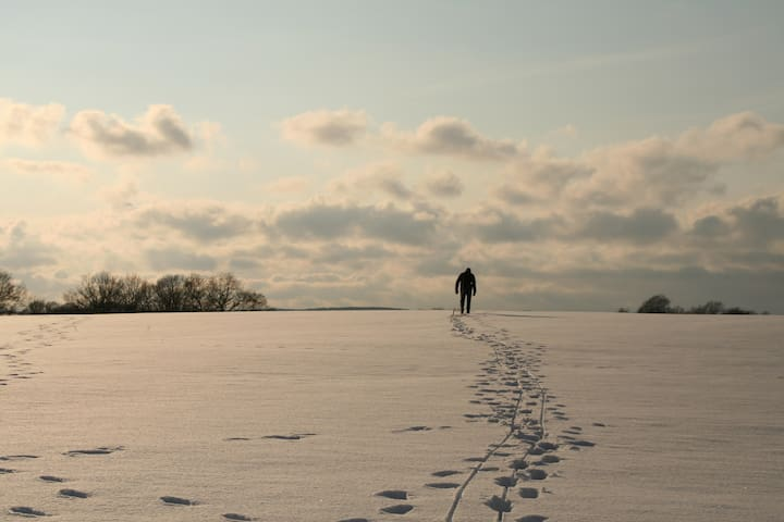 Tolle Spaziergänge im Schnee