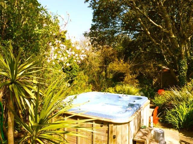 Hot tub & Palms