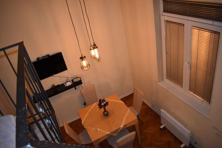 RARA apartment 1 in the heart of  Skopje-center