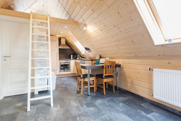 Neu erstellte Dachgeschoss Einraumwohnung