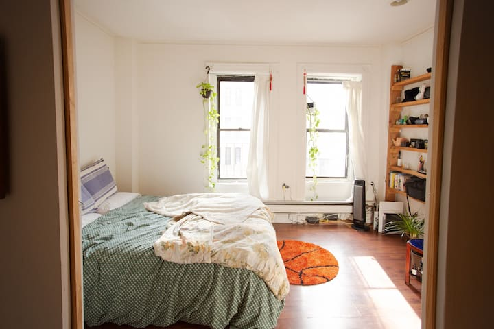 Entire apartment in Prospect Heights, Brooklyn