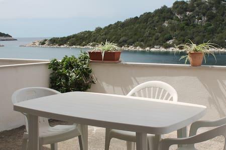 Villa Aragosta Seaview Apartment 2 - Zaklopatica - Apartment