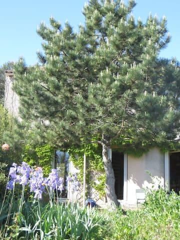 Grande chambre privee dans maison avec jardin - Clapiers