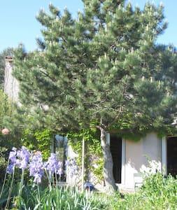 Grande chambre privee dans maison avec jardin - Clapiers - Bed & Breakfast