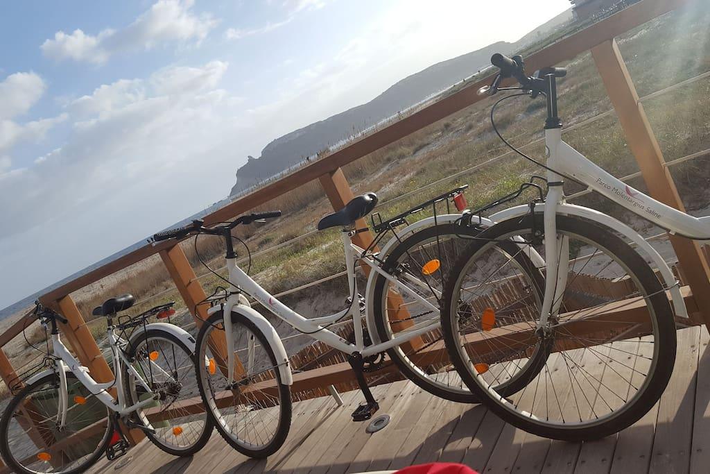 Bike tour to Poetto's beach
