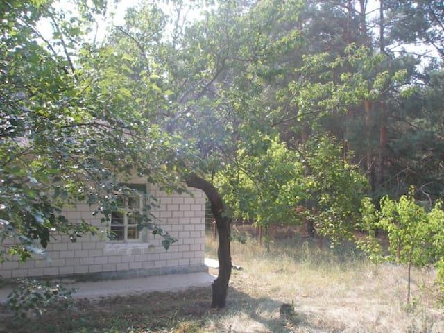 pronájem domu v přírodě - Stare - House