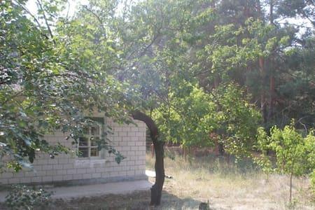 pronájem domu v přírodě - Stare
