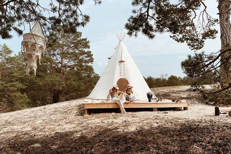 Tipi in the pines