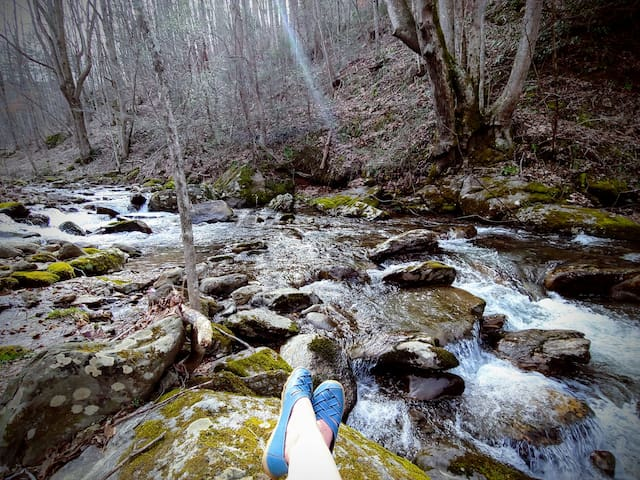 Stoneyfork Lodge on Mineral Creek in Pisgah Forest