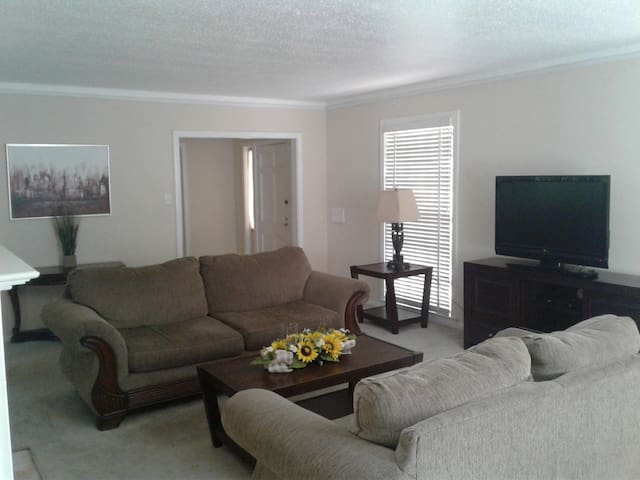 Downtown Houston and Med Center (Large3 BR House)