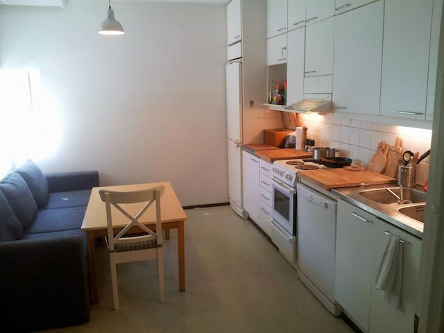Spacious 70 m² apartment in Helsinki city center